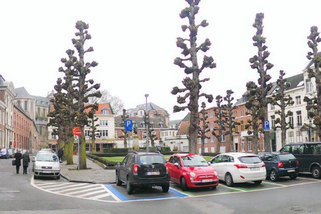 Harold Tor - Oud Leuven: Pedagogie Het Varken Hogeschoolplein